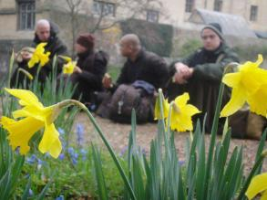 Chilling by the daffodils